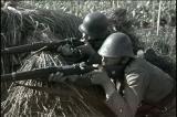 Деятельность румынских войск на территории Краснодарского края в годы Великой Отечественной войны