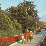 Анапа. Центральная аллея Парка культуры и отдыха имени 30-летия Победы. 1983 год.