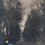 Бульвар, до 1914 года