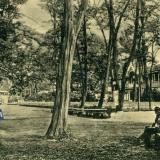 Екатеринодар. Городской сад. Клубная аллея, до 1917 года