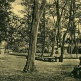 Екатеринодар. Клубная аллея в городском саду, до 1917 года