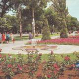 Краснодар. Бульвар на площади Труда, 1982 год