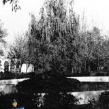 Краснодар. Фонтан у центрального входа в парке Горького.