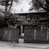 Краснодар. На улице Шаумяна у дома №133. 1978 год.