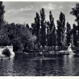 Краснодар. Парк культуры и отдыха. Пруд. Около 1961 года