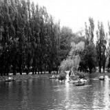 Краснодар. В парке Горького у пруда, около 1961 года