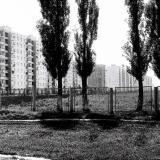 Краснодар. Вид на посёлок Гидростроителей, 1978 год. Фото №2