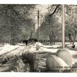Краснодар. Парк им. М. Горького. Аллея к танцплощадке, 1968 год