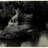 Парк им. М Горького, 1957 год