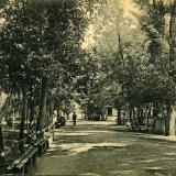 Екатеринодар. Пушкинская аллея Городского сада, до 1917 года