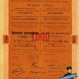 """Екатеринодар. Временное удостоверение на 10 акций АО """"Саломасъ"""""""