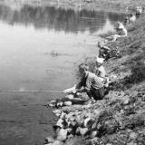Краснодар. Рыбалка на Карасуне, 1964 год.