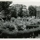 Краснодар. №6. Первомайский сквер, 1956 год