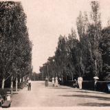 Краснодар. Аллея в парке культуры и отдыха им. М. Горького, 1938 год