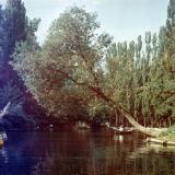Краснодар. Большой пруд в Горпарке, 1977 год