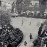 Краснодар. Двор дома по ул. Мира, 44. Около 1967 года