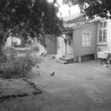 Краснодар. Двор по ул. Советской 52, 1977 год