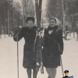 Краснодар. Горпарк. 22 января 1950 года. Березовая аллея