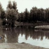 Краснодар. Горпарк. Пруд, западная сторона. 1930-1940-е гг.