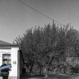 Краснодар. На улице Октябрьской. № 41. Перекрёсток с Советской, вид на запад.