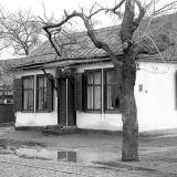 Краснодар. Парикмахерская. Садовая, 38. 9 января 1983 года