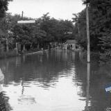 Краснодар. После дождя, 19.06.1966 года.