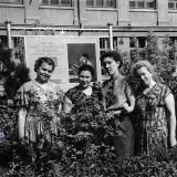 Краснодар. Возле Краснодарского института пищевой промышленности, 1959 год.