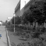 Краснодар. У здания КубГУ, 1980 год