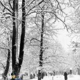 Краснодар. Закладной камень на улице Тельмана, на месте будущего памятника воинам-освободителям Краснодара.