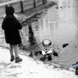 Краснодар. Парк им.Горького, 10 января 1965 года.