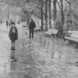 Краснодар. На аллеях парка им.Горького, январь 1965 года.