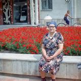 Красных партизан улица - от Рашпилевской до Аэродромной