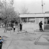 Краснодар. Во дворе дома по ул.Северная, 290, 1982 год