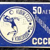 Значки. 50 лет волейбола СССР. Кубок СССР. Краснодар, 73