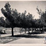 Геленджик. Лермонтовский бульвар, 1955 год