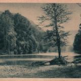 Псекупс у берегов парка, 30-е годы
