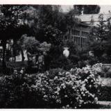 Горячий ключ. Санаторий № 2. Уголок парка, 1965 год