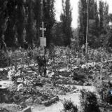 Горячий ключ. Фото из альбома немецкого солдата. 1942 год.