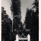 Горячий Ключ. Вход в псекупский парк, 1960 год
