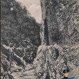 Красная поляна. Красно-Полянское шоссе, около 1914 года