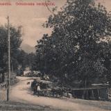 Красная поляна. Остановка экскурсии, около 1917 года