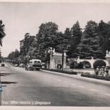 Сочи. Авто-трасса у Дендрария, 1958 год