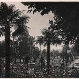 Сочи. Цурюпинский парк, 1935 год
