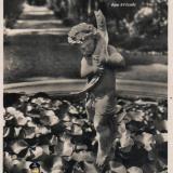 Сочи. Дендрарий. Бассейн с лотосом и мальчик с рыбкой, 1949 год