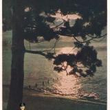 Сочи. Море ночью, 1956 год