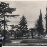 Сочи. Приморский парк, 1940 год