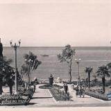 Сочи. Приморский парк, вид  на море, 1956 год