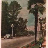 Сочи. Проспект, 1956 год