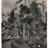 Сочи. Ривьера, 1938 год