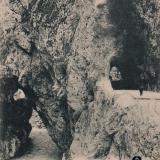 Сочи. Шоссе в Красную поляну, около 1906 года
